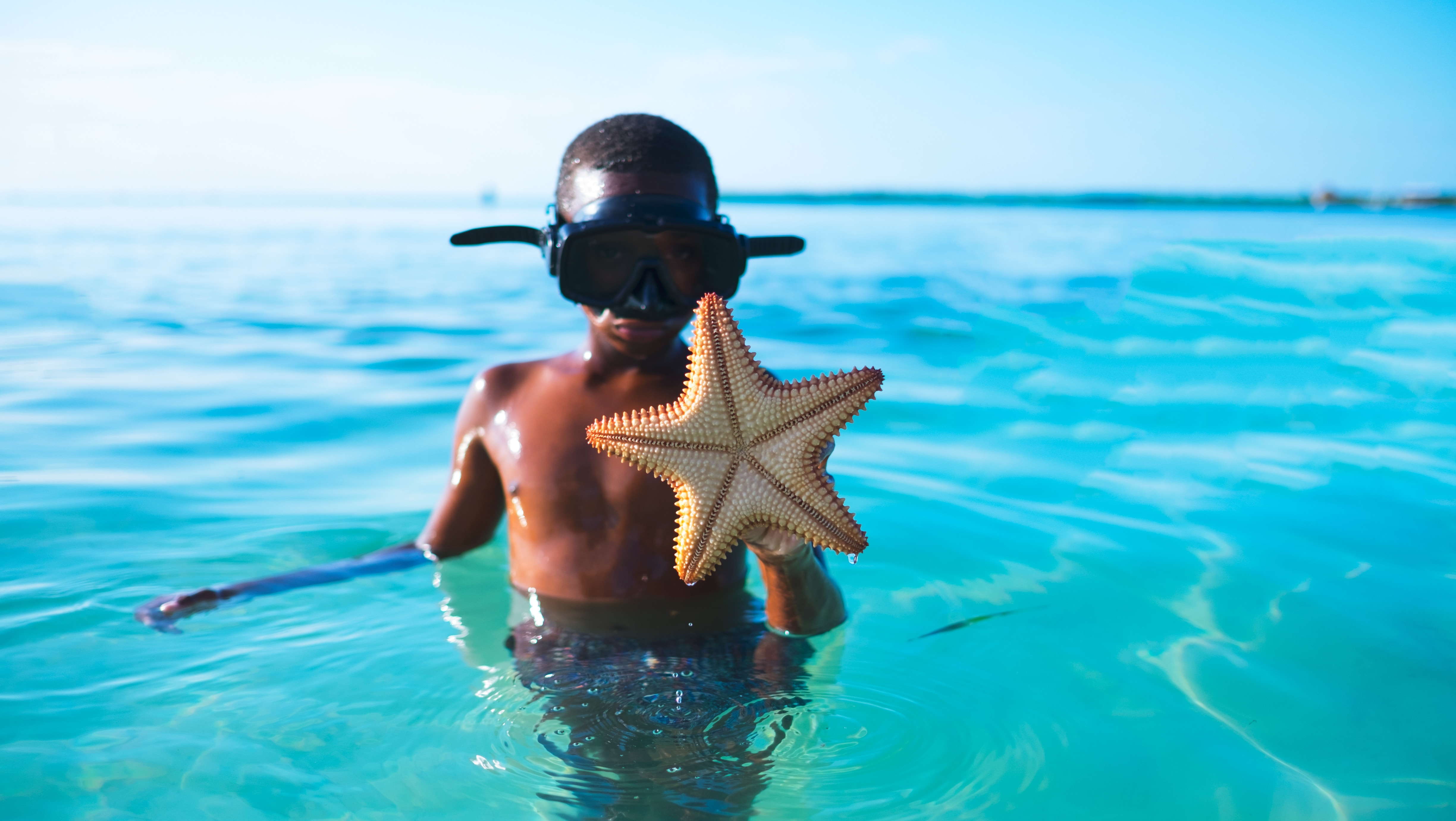Wyndham Grand Cruises Into Belize With Luxurious Five Star Destination Ocean Style